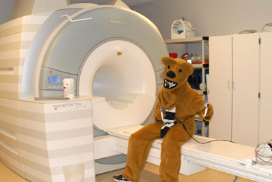 Nittany Lion on 3T Scanner
